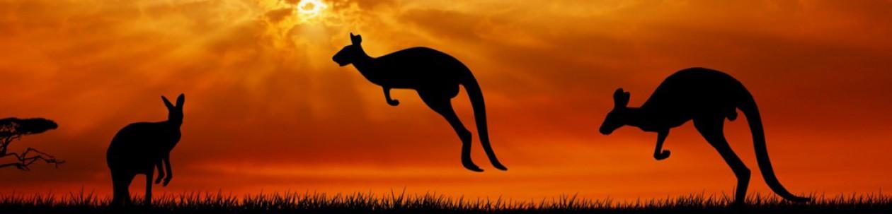 Aussie Book Reviewer